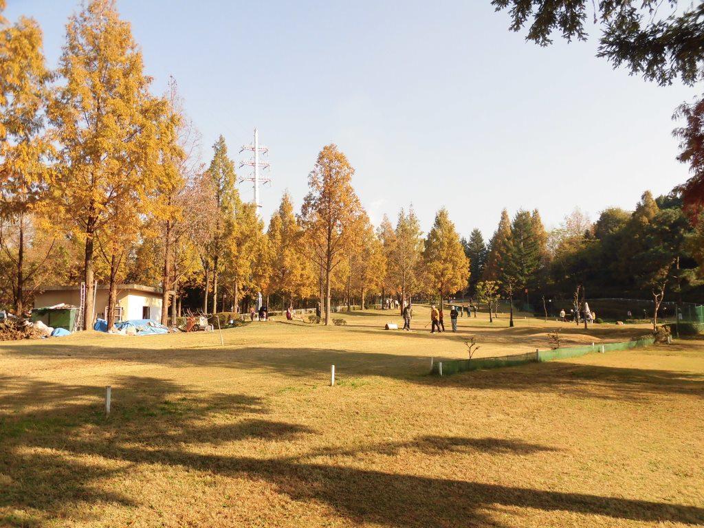 鶴見 緑地 パーク ゴルフ
